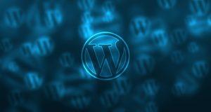 Wordpress für Nischenseiten ist perfekt